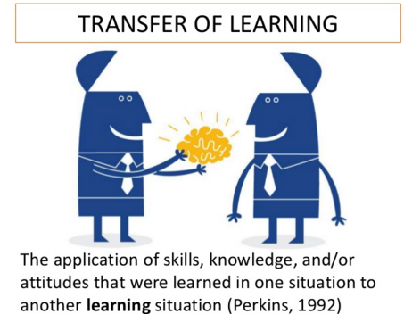 迁移学习101: Transfer learning, pretrained learning, fine tuning 代码与例程分析 源码实践
